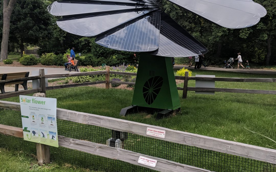 The First Smartflower in Michigan!